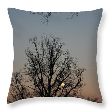 Through The Boughs Portrait Throw Pillow by Dan Stone