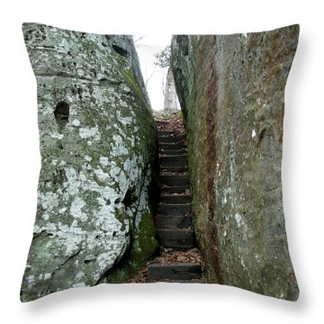 Throw Pillow featuring the photograph Through The Crack by Paul Mashburn