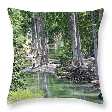 Through The Looking Glass Throw Pillow by Elizabeth Hart