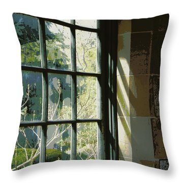 Throw Pillow featuring the photograph View Through The Window by Marilyn Wilson