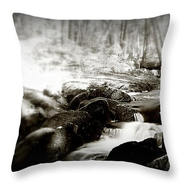 Through The Woods Throw Pillow by Greg DeBeck