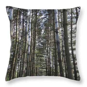 Through The Woods Throw Pillow by Jeannette Hunt