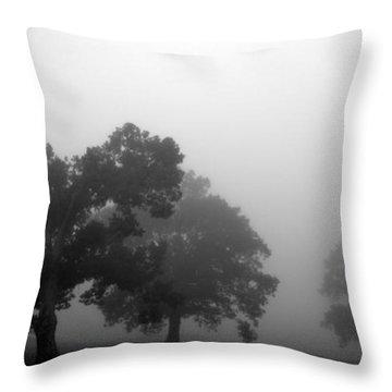 Through Time Throw Pillow by Amanda Barcon