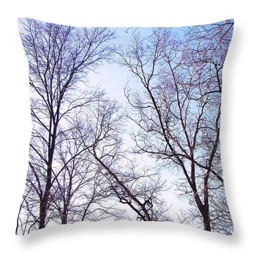 Throw Pillow featuring the photograph Through To Heaven by Pamela Hyde Wilson