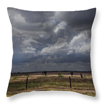 Thunder In The Distance Throw Pillow by Dinah Anaya