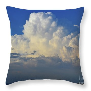 Thunderhead Throw Pillow by Suzette Kallen