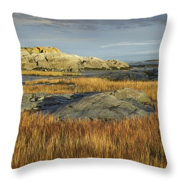 Tidal Marsh Riviere Trois Pistoles Throw Pillow by Tim Fitzharris
