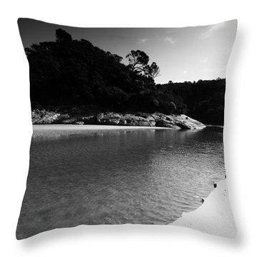 Tidal River  Throw Pillow
