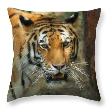 Tiger Painterly Square Format  Throw Pillow by Ernie Echols