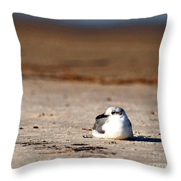 Throw Pillow featuring the photograph Time Alone by Luana K Perez