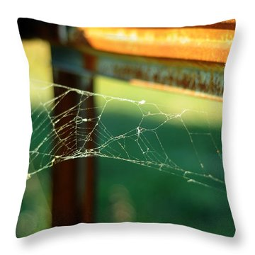 Time And Patience Throw Pillow