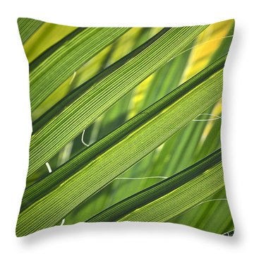 Time And Space Throw Pillow by Gwyn Newcombe