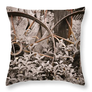 Time Forgotten Throw Pillow by Carolyn Marshall