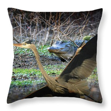 Throw Pillow featuring the photograph Time To Leave by Dan Friend