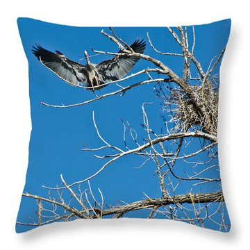 Time To Nest Throw Pillow