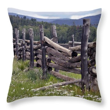 Timeless  Throw Pillow by Juls Adams