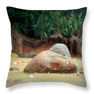 Throw Pillow featuring the photograph Tinopai Beach Rock by Mark Dodd