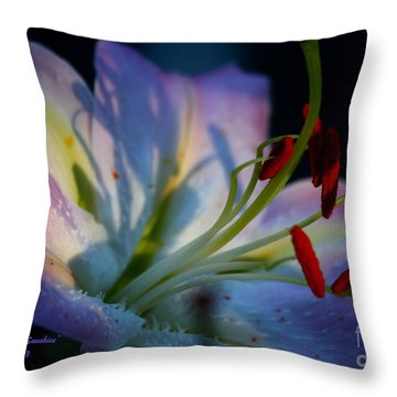 Tiny Ray Of Sunshine Throw Pillow