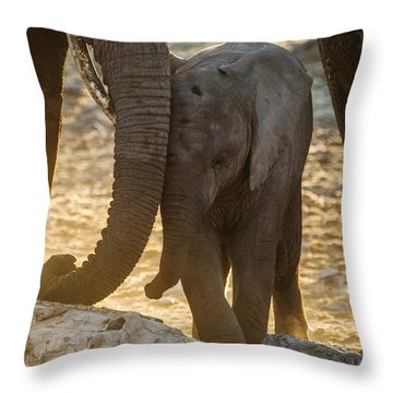 Tiny Trunk Throw Pillow
