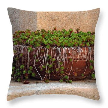 Tlaquepaque Potted Greens Throw Pillow