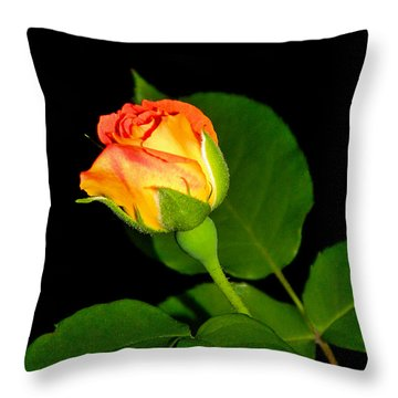 Throw Pillow featuring the photograph To My Beloved by Ester  Rogers