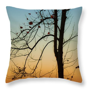 To The Morning Throw Pillow