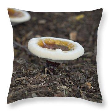 Toadstools Throw Pillow by Douglas Barnard