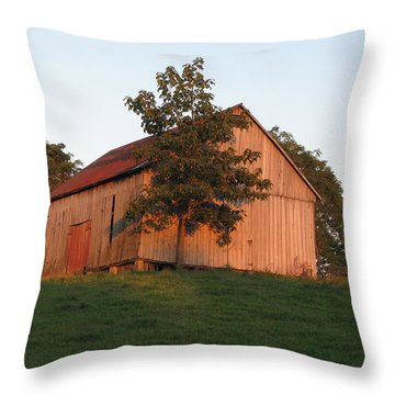 Tobacco Barn II In Color Throw Pillow