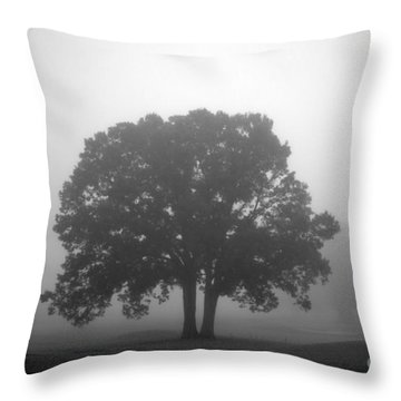 Together Always Throw Pillow by Amanda Barcon