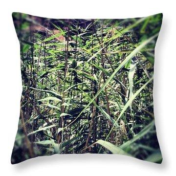 Toledo Verde Throw Pillow