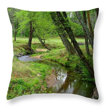 Throw Pillow featuring the photograph Toms Creek In Early Spring by Kathryn Meyer