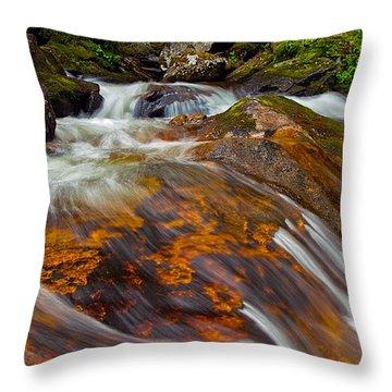 Tonahutu Creek Throw Pillow by Brian Kerls