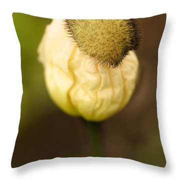 Top Hat Throw Pillow by Brooke Roby