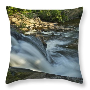 Top Of The Dog 4191 Throw Pillow by Michael Peychich