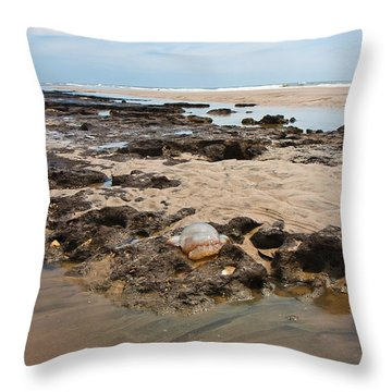 Topsail Sponge-land Throw Pillow by Betsy Knapp