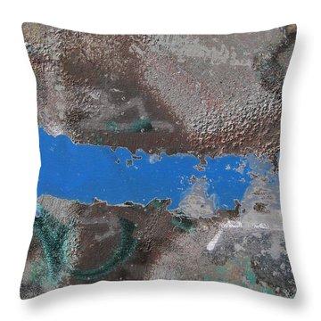 Torn 2 Throw Pillow by Tim Allen