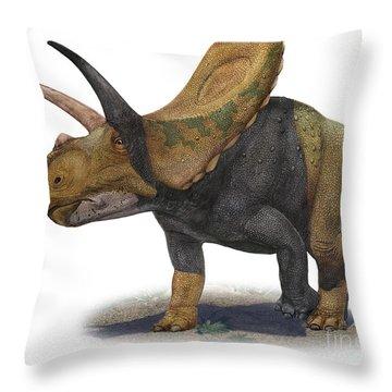 Torosaurus Latus, A Prehistoric Era Throw Pillow by Sergey Krasovskiy