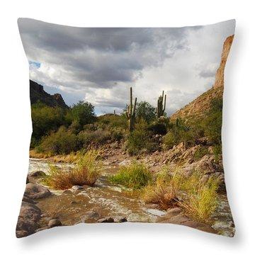 Throw Pillow featuring the photograph Tortilla Flat by Tam Ryan