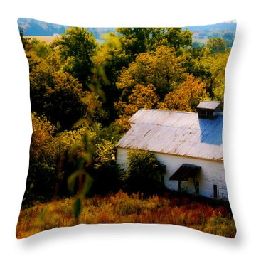Throw Pillow featuring the photograph Touch Of Old Country by Peggy Franz