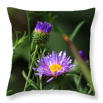 Touch Of Spring Throw Pillow by Mistys DesertSerenity