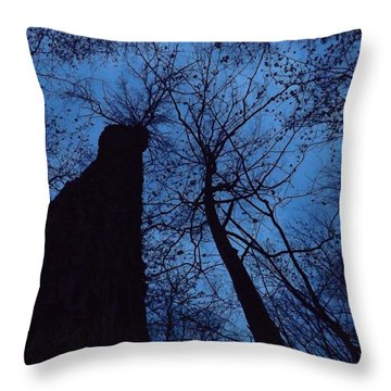 Towering Into The Night Throw Pillow