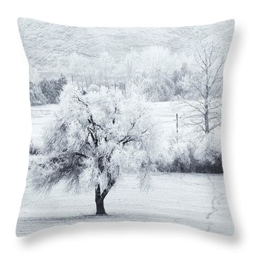 Tracks In The Frost Throw Pillow by Mike  Dawson