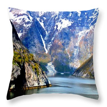 Tracy Arm 8 Throw Pillow
