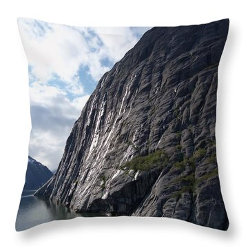 Tracy Arm 9 Throw Pillow
