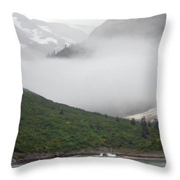 Tracy Arm Inlet Throw Pillow