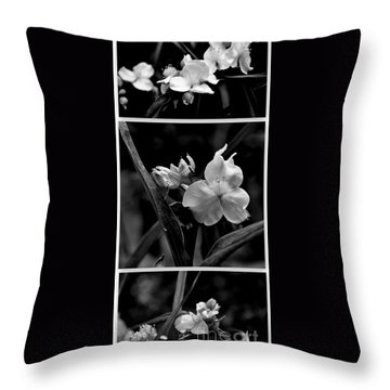 Throw Pillow featuring the photograph Tradescantia Triptych by Tanya  Searcy