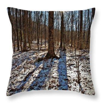 Trail In Winter Throw Pillow by Susan Leggett