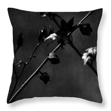 Trances And Dreams Throw Pillow by Rebecca Sherman