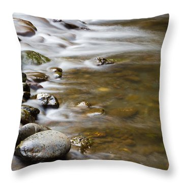 Tranquil Throw Pillow by Heidi Smith