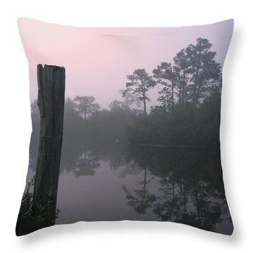 Throw Pillow featuring the photograph Tranquility by Brian Wright